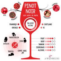 infographic-pinotnoir